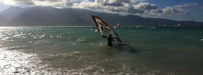 Markus (one of the condo owners) windsurfing in Kanaha.