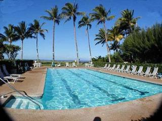 Beautiful High End Ocean Front Condo in Kihei