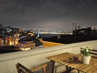 Flat w XL Terrace+Bosphorus View !!