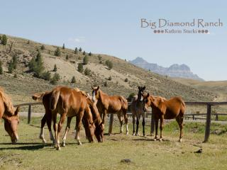 Summer visitors on the Big Diamond Ranch