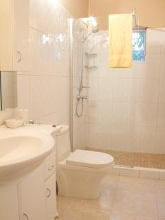 Spacious guest bathroom newly renovated with state of the art fixers