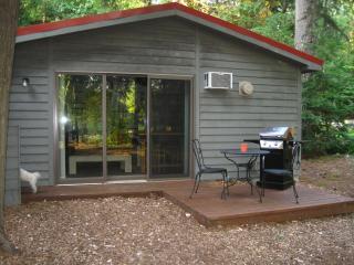 Charming Studio Cottage -  Alden, Mi