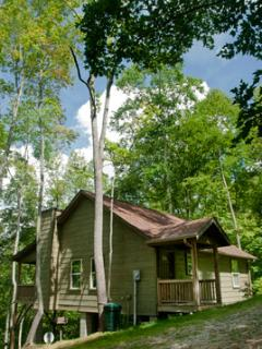 The Cabins at Long Branch: Dogwood Breeze, Nantahala Township