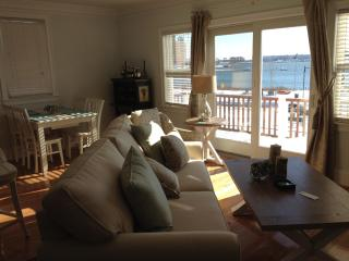 Brand New Luxury 3 story with private roof deck, Boston