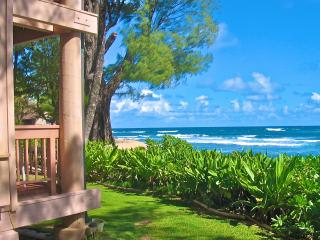 Tropical Beachfront Studio - Christmas Available, Haena