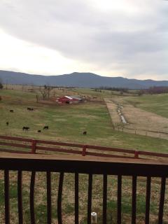 View from porch of the mountains and a working farm