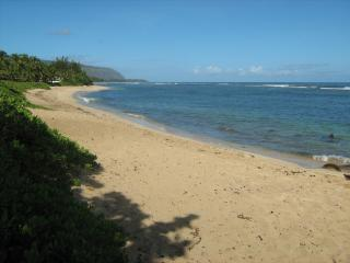 Island Paradise Away from Home, Waialua