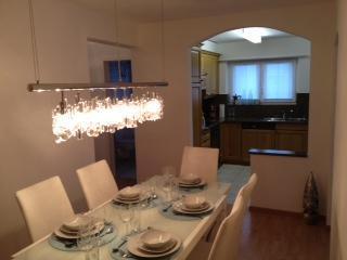 Luxury 4 1/2 rooms apartement with mountain views in Lenzerheide