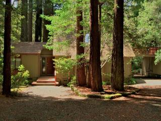 Pet-friendly home w/deck & cozy interior., Mendocino