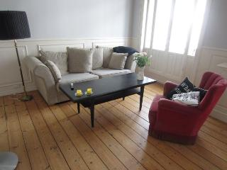 Lovely large Copenhagen apartment in an artists street