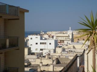 4 ° piano, grande balcone esterno (270sf), camera da letto (110sf), Gallipoli