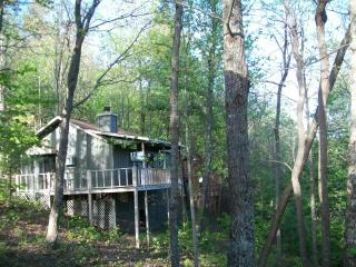 4th night FREE! Helton Falls Lodge-Owls Nest-Vogel, Blairsville