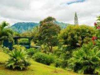 BALI STUDIO, LUSH ACRES & STREAM IN KAPAA