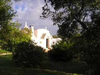 Charming trullo in the heart of the country