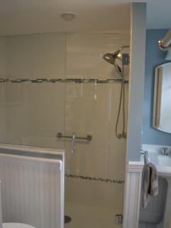 Main level, full bath with walk-in spa shower
