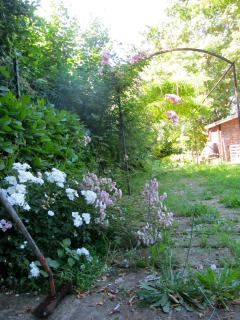 Our secret garden...one