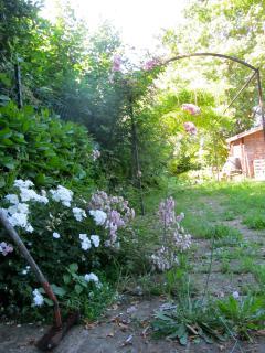 Our secret garden...one
