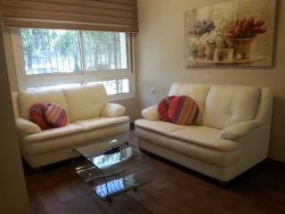 Newly Renovated 2 Bedroom Apt In Great Location, Jérusalem