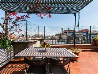 Amazing terrace in Barcelona centre, up to 5 guests!