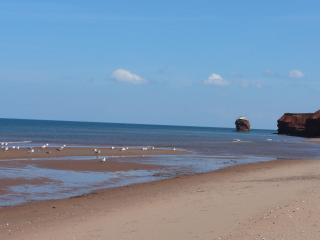 Beach is a 5 min walk down a country lane.