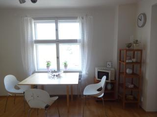 Bright appartment with terrace near centre