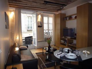 Gorgeous Paris Vacation Rental in St. Germain de Pres