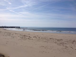 1,000 feet of private, sandy beach