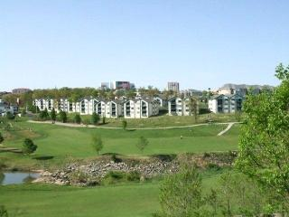 AFFORDABLE LUXURY**GORGEOUS CONDO-INDOOR POOL, Branson