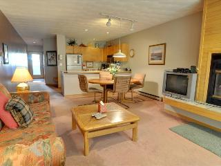 EAST BAY 8: 1 Bed/1 Bath on Lake Dillon, Spectacular Views, Covered Parking
