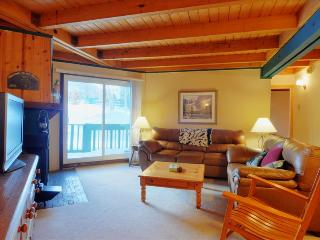 TREEHOUSE 107: Ground Floor 2 Bed/2 Bath, Great Location for Summer & Winter, Wifi, Large Clubhouse, Silverthorne
