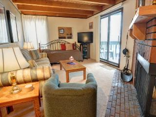 TREEHOUSE G-208: 1 Bed/1 Bath Condo, Brimming with Convenience and Comfort in a Great Location, Silverthorne