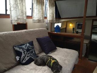 Lola: Budget Friendly Floating Suite in Downtown Boston!