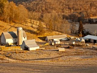 Briggs Farm, Winona