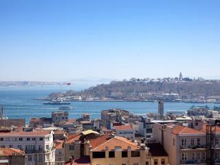 GALATA &Industrial Design & SEA VIEW  & 3 Bedroom, Istambul
