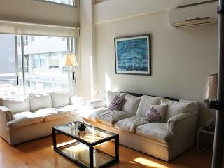 Loft/apartment in Palermo Soho - Paraguay and Oro st (220PAS), Buenos Aires