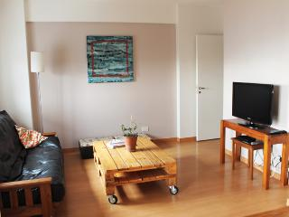 Bright and Cozy apartment in Santos Dumont and Amenabar st, Palermo Hollywood (233PH), Buenos Aires