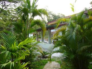 Nosara natural: art, pool, private+secure!monkeys!