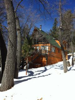 Cozy Cabin in Big Bear - Moonridge