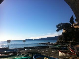 Apt a Zoagli vista mare panoramica-vicino CinqueTerre