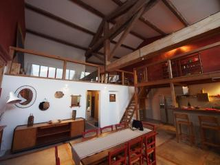 Appartement de 180 m2 avec jardin commun et piscine /., Fleury