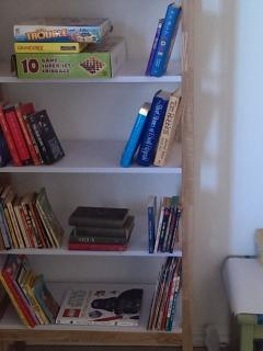 Book shelf in game nook