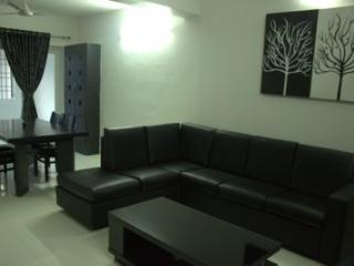 Angson Apartment-3 BHK-Greams Road, Chennai (Madras)