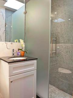 Spa-stytle bathroom with walk-in shower features frosted glass panel & skylight in bathroom!