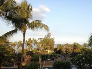 Maui Vista #1402-Ocean View, Romantic Jacuzzi, A/C, Kihei
