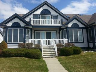 RATE LOWERED!! Harbor Condo wth All the Extras, Manistee