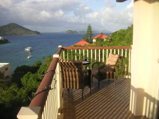 Pt. Pleasant Preferred ocean view condo in ST Thomas... Free Wifi and Washer Dryer...., St. Thomas