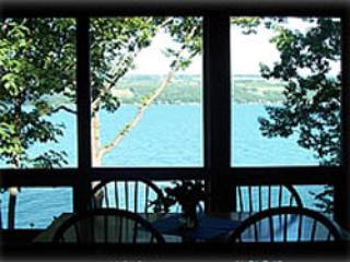 Luxury Sunflower Apartment  on Seneca Lake NY