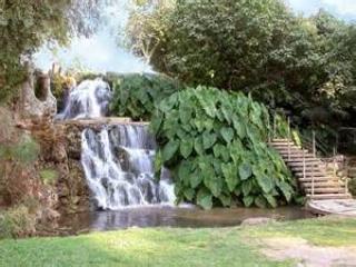 Waterfall in the Kibbutz