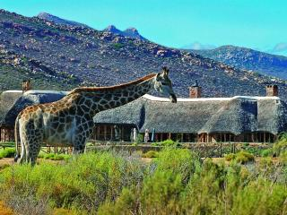 949 - AQUILA GAME RESERVE