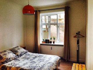 Lovely spacious Copenhagen apartment near Faelled Park, Copenhague